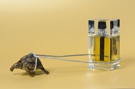 My Dior-stilllife for l'Officiel Hommes, celebrating their 5th anniversary (no turtles were harmed during the shoot)